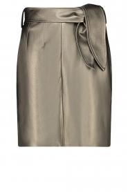 Aaiko |  Faux leather metallic skirt Patia | metallic  | Picture 1
