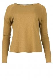 American Vintage | Basic ronde hals T-shirt Sonoma | groen  | Afbeelding 1