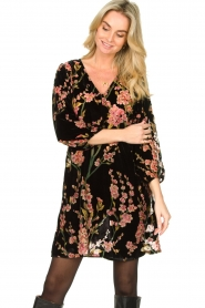 Freebird |  Velvet dress with floral print Floor | pink  | Picture 2