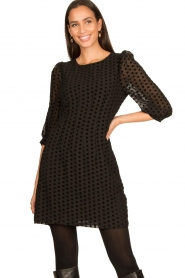 Freebird |  Dress with velvet spots Elyn | black  | Picture 4