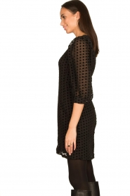 Freebird |  Dress with velvet spots Elyn | black  | Picture 6