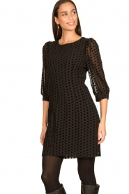 Freebird |  Dress with velvet spots Elyn | black  | Picture 5