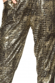 Lolly's Laundry |  Lurex pants Gonna | metallic  | Picture 7