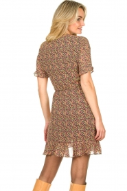 Freebird |  mini dress florals Rosy | Multi   | Picture 6