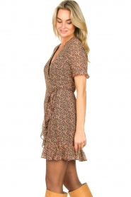 Freebird |  mini dress florals Rosy | Multi   | Picture 5