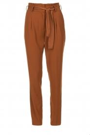 Dante 6 |  Trousers Brandoo | brown  | Picture 1