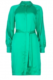 Dante 6 |  Silk stretch dress Parisa | green  | Picture 1