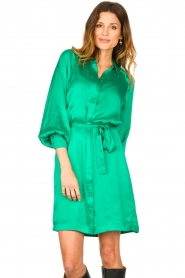 Dante 6 |  Silk stretch dress Parisa | green  | Picture 5