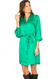 Dante 6 |  Silk stretch dress Parisa | green  | Picture 2