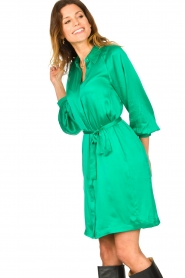 Dante 6 |  Silk stretch dress Parisa | green  | Picture 4