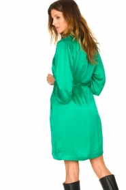 Dante 6 |  Silk stretch dress Parisa | green  | Picture 7