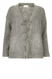 American Vintage |  Soft knitted cardigan Tudbury | grey  | Picture 1