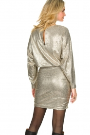 Second Female |  Metallic dress Pearl | light gold  | Picture 6