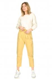 ba&sh |  Paperbag pants Jalia | yellow  | Picture 2