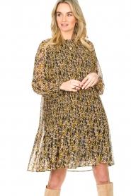 Set    Leopard printed dress Vani   multi    Picture 4