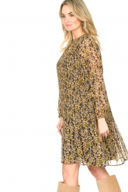 Set    Leopard printed dress Vani   multi    Picture 5