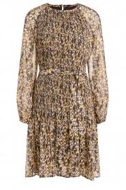 Set    Leopard printed dress Vani   multi    Picture 1