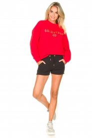 Goldbergh |  Luxurious logo sweater Flavy | red  | Picture 3