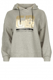 Goldbergh |  Luxurious logo sweater Fiza | grey  | Picture 1