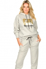 Goldbergh |  Luxurious logo sweater Fiza | grey  | Picture 2