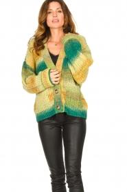 Set |  Chunky knit cardigan Faja | multi  | Picture 4