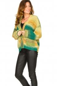 Set |  Chunky knit cardigan Faja | multi  | Picture 5