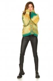 Set |  Chunky knit cardigan Faja | multi  | Picture 3