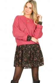 Fracomina |  Knitted sweater Levy | pink  | Picture 2