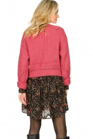Fracomina |  Knitted sweater Levy | pink  | Picture 5