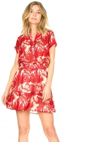 Lolly's Laundry |  Leaf print skirt with lurex Alexa | red  | Picture 6