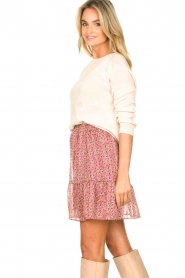 Lolly's Laundry |  Print skirt Alexa | pink  | Picture 5