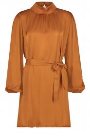 Freebird |  Dress with tie waistbelt Samara | brown  | Picture 1