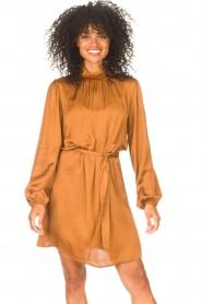 Freebird |  Dress with tie waistbelt Samara | brown  | Picture 4