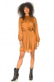 Freebird |  Dress with tie waistbelt Samara | brown  | Picture 3