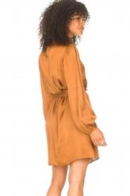 Freebird |  Dress with tie waistbelt Samara | brown  | Picture 7