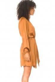 Freebird |  Dress with tie waistbelt Samara | brown  | Picture 6