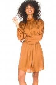 Freebird |  Dress with tie waistbelt Samara | brown  | Picture 2