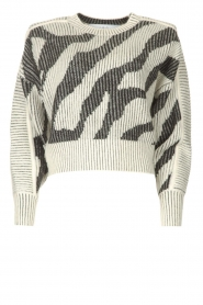 IRO    Sweater with print Voryta   natural     Picture 1