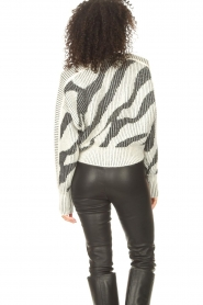 IRO    Sweater with print Voryta   natural     Picture 8