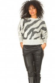 IRO    Sweater with print Voryta   natural     Picture 6