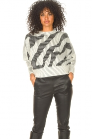 IRO    Sweater with print Voryta   natural     Picture 2