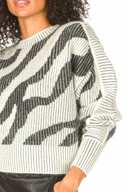 IRO    Sweater with print Voryta   natural     Picture 9