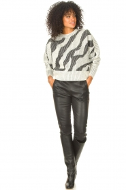 IRO    Sweater with print Voryta   natural     Picture 3
