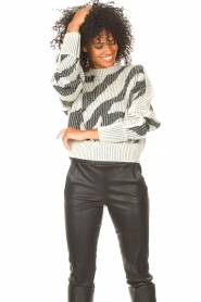 IRO    Sweater with print Voryta   natural     Picture 5