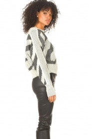 IRO    Sweater with print Voryta   natural     Picture 7