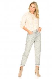 IRO |  Boyfriend jeans Rousselin | grey  | Picture 2