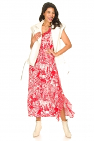 Silvian Heach |  Maxi dress with print Sirius | red  | Picture 3