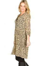 Set |  Animal print dress Holly | animal print  | Picture 6