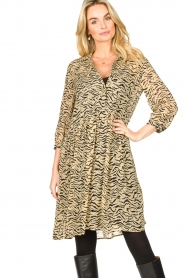 Set |  Animal print dress Holly | animal print  | Picture 5