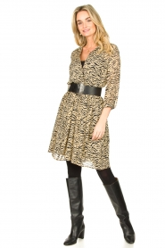 Set |  Animal print dress Holly | animal print  | Picture 3